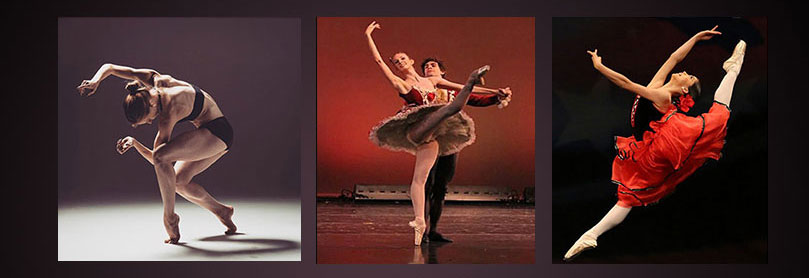 Dance Theatre International of San Jose CA